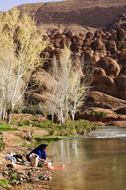Woman washing clothes in the river of the picturesque Dades Gorge in the Atlas mountains ecosystem,habitat,environment,landscape,Morocco,Africa,stream,river,freshwater,water,people,humans,living,settlement