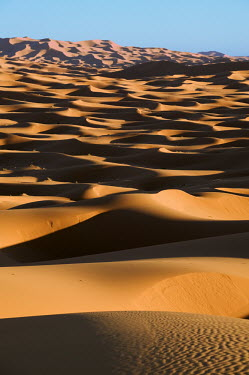 Scenic view of sand dunes in the Erg Chebbi area of the Sahara desert ecosystem,habitat,environment,landscape,Morocco,Africa,sand,sand dunes,dunes,desert,shadows,shade,arid,dry