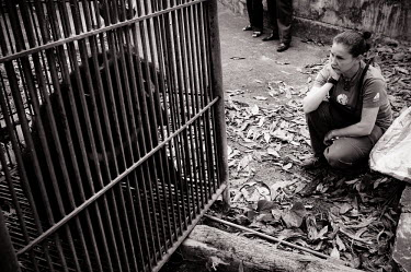 Tam Dao's Animals Asia head vet sadly looks on at Miracle, who has been in this cage for 8 years, Vietnam Sad,upset,sadness,panic,panicked,worried,scared,Afraid,negative,sad,Animal rescue,rescued,sanctuary,rescue,cage,caged,Asiatic black bear,Ursus thibetanus,Bears,Ursidae,Chordates,Chordata,Carnivores,Ca