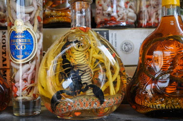 Scorpion and snake wine in a Vietnamese market Dead,Stage,Animalia,Chordata,Reptilia,Squamata,Elapidae,cobra,cobras,snake,snakes,reptile,snake wine,market