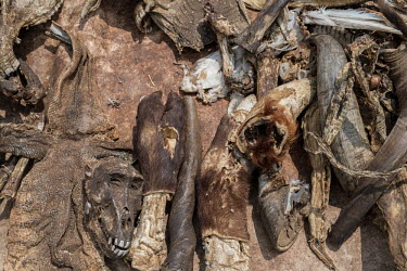 Muti market in Africa selling animal parts hunting,Hunting impact,Persecution,Dead,Stage,Resource exploitation,Human impact,human influence,anthropogenic,Trafficking,wildlife trafficking,animal trafficking,animal traffic,black market,wildlife