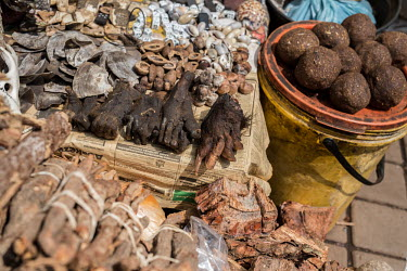 Muti market in Africa selling animal parts Persecution,Dead,Traditional medicine,Chinese medicine,traditional Chinese medicine,Trafficking,wildlife trafficking,animal trafficking,animal traffic,black market,wildlife traffic,hunting,Hunting imp