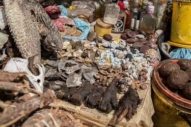 Muti market in Africa selling animal parts Resource exploitation,Traditional medicine,Chinese medicine,traditional Chinese medicine,Stage,Dead,Human impact,human influence,anthropogenic,hunting,Hunting impact,Persecution,Trafficking,wildlife t