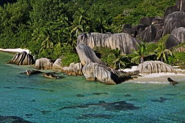 Aerial view of La Digue island - Seychelles coast,Coastal,coast line,coastline,saltwater,Marine,saline,tropics,Tropical,shoreline,Shore,sea shore,shoreland,sea side,environment,ecosystem,Habitat,beaches,Beach,Sea,seas,reef,Coral reef,tropic,ree