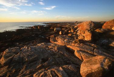 Dassen Island rocky shoreline - Dassen Island, South Africa Rocky shore,Coastal,Landscape,Rock,Rock formation