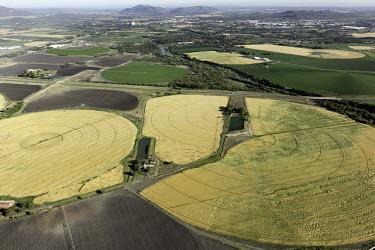 Circular fields result from centre-pivot farming methods - South Africa Aerial,Farming,Farmland,Circular fields,Field,Farming methods,Centre-pivot method,Landscape