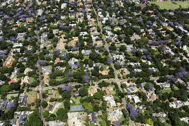 Aerial view of Johannesburg suburbs - Johannesburg, South Africa Aerial,Skyline,Landscape,City,Suburbs,Road,Buildings,Houses,Neighbourhood,Trees,Rooftops,Settlement