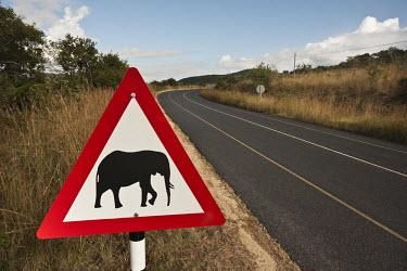 Elephants crossing sign along a highway - South Africa Road,Winding,Traffic control,Sign,Elephant crossing,Landscape,Tarmac,Information,Nobody,Animal representation,Prohibition sign,Vulnerable,Warning Sign,Warning
