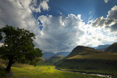 Scenery of Giants Castle Nature Reserve under dramatic skies - South Africa Africa,African,Southern Africa,scenic,scenery,beauty in nature,natural world,non-urban scene,nature,outdoors,sky,cloud formation,dramatic sky,mountains,landscape,green,grass